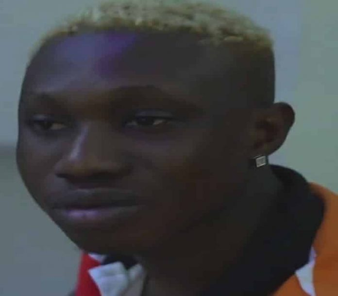 Zlatan Ibile Biography Facts.